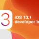 iOS 13.1 developer beta